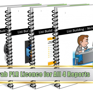 Lead Magnets PLR Upgrade